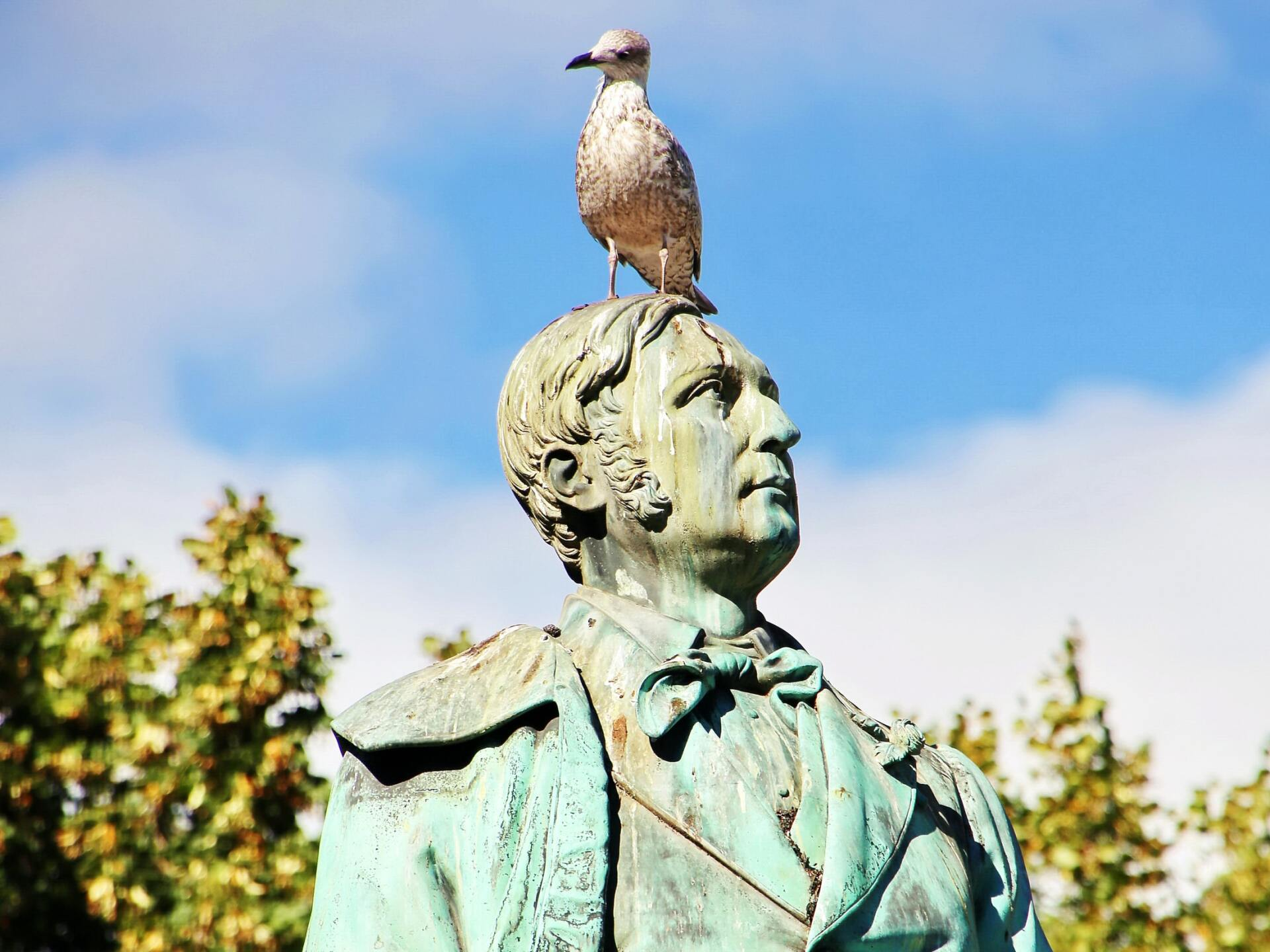 A pigeon on a statue